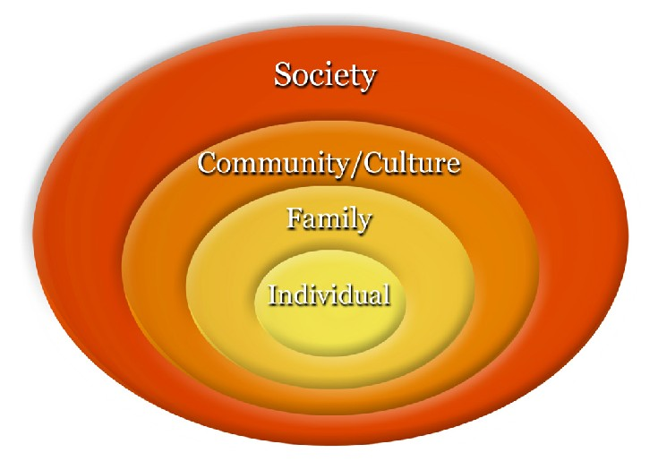 The Concept of Social Institution