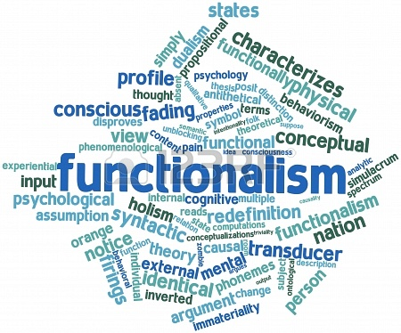 FOCUS ON FUNCTIONALISM AND CHILDREN